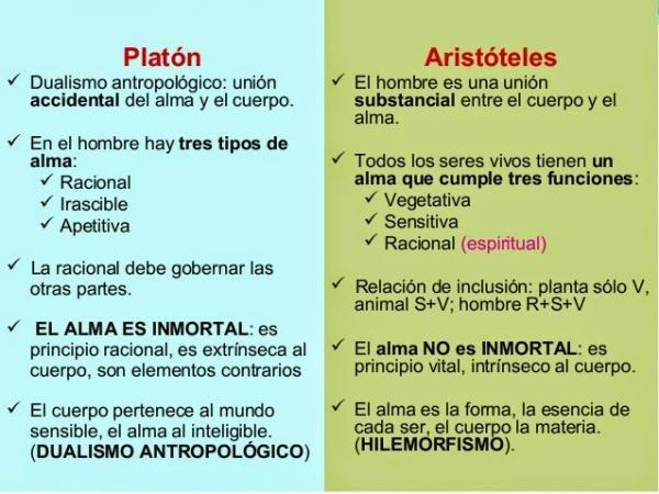 Las Principales Diferencias Entre Platon Y Aristoteles Resumen Esquemas En 2020 Platon Y Aristoteles Platon Filosofia Platon