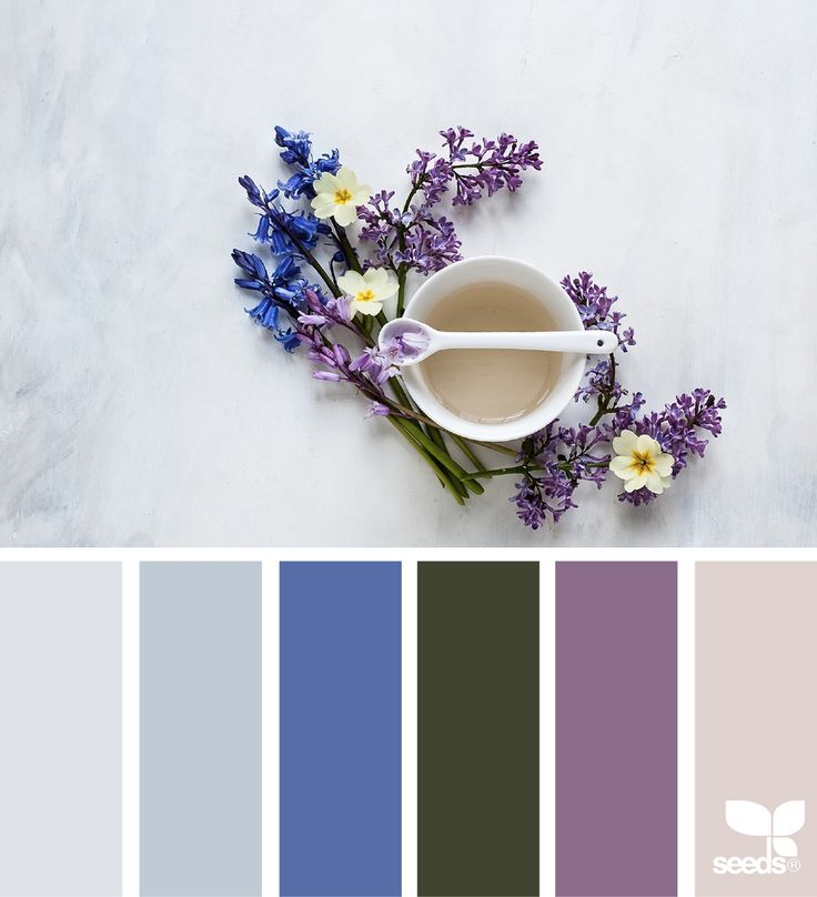 Spring Paint Colors 86 best { spring } images on pinterest | design seeds, colour