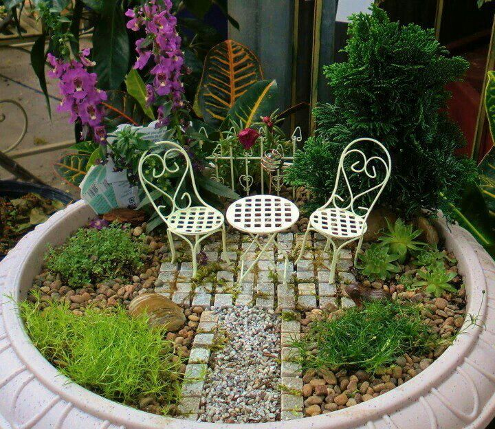 Micro Garden Ideas make your own kitchen micro garden by attaching the planters to the wall diy Find This Pin And More On Micro Jardin Miniature Fairy Garden Nice Idea