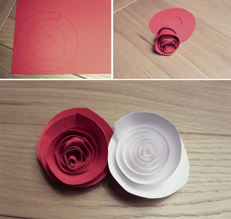 #Tutorial #rose di #carta. #d.i.y. #craft #paper #rose