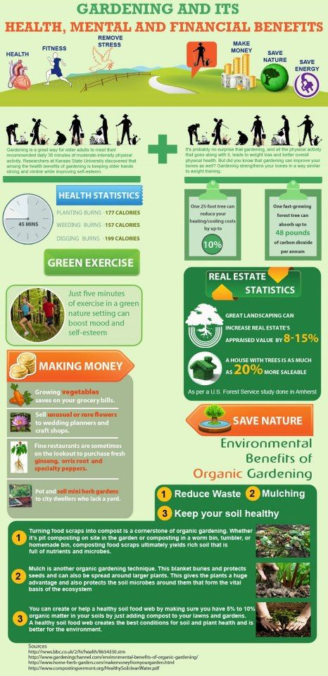 INFOGRAPHIC: How gardening can save money, burn calories and protect the environment.