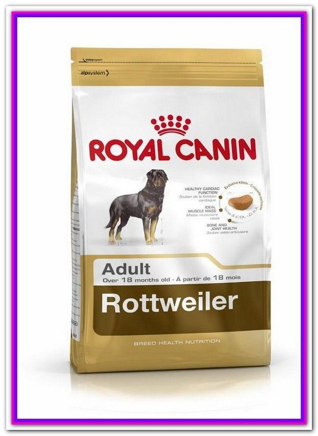 What Is The Best Dog Food For Rottweiler Puppies Rottweiler