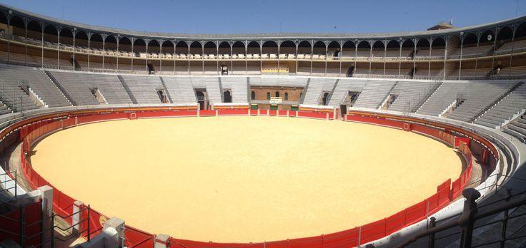 Why I Didn't Go To The Bullfight #wabas #Spain #bullfighting