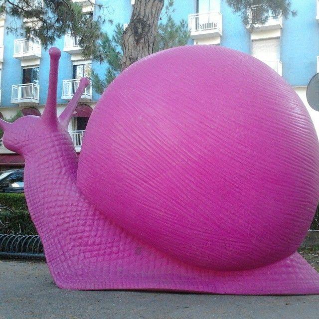 tutto è rosa! :)