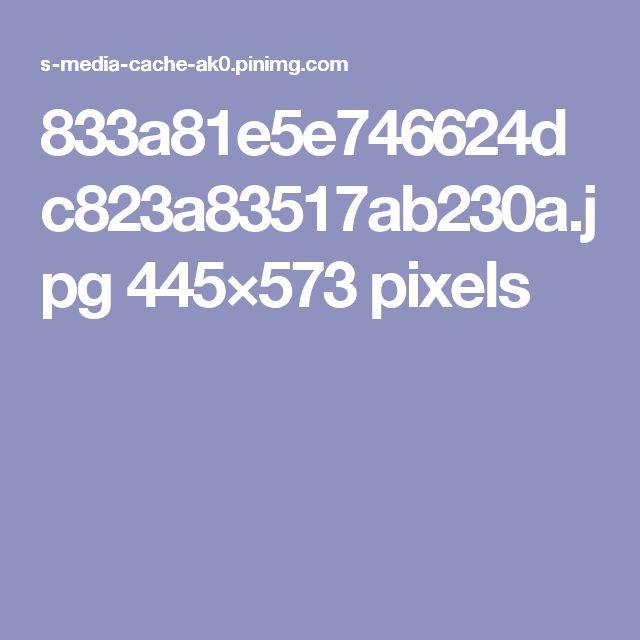 833a81e5e746624dc823a83517ab230a.jpg 445×573 pixels