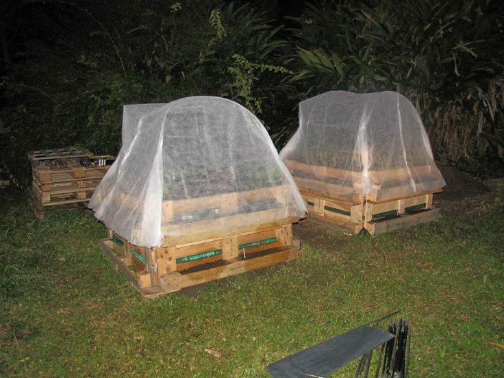 Une serre fait maison avec des arceaux de tente jardin for Arceaux de jardin