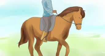 Train a Horse to Recognize Commands