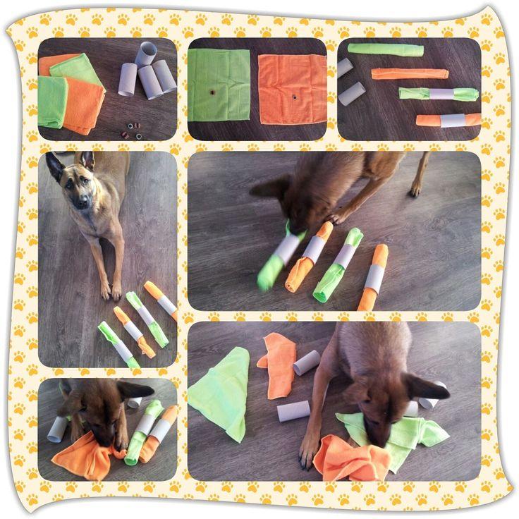 Spel 113 (hondenspel hond spel denkwerk hersenwerk brain dog game play diy)…