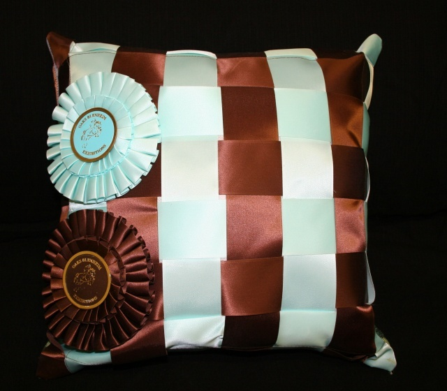 Ribbon Pillow Horse Crafts Horse Ribbons Horse Show
