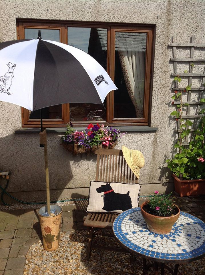 our new @cartmelsticky umbrellas make the perfect sunshades too!