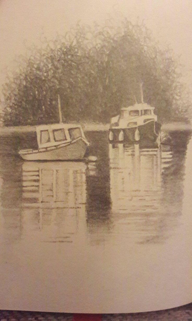 River Dart  Stoke Gabriel Tracy Bolton art