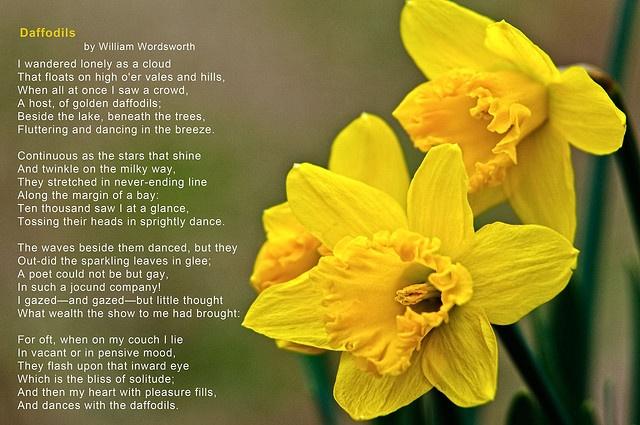 Daffodils poem by william wordsworth essay