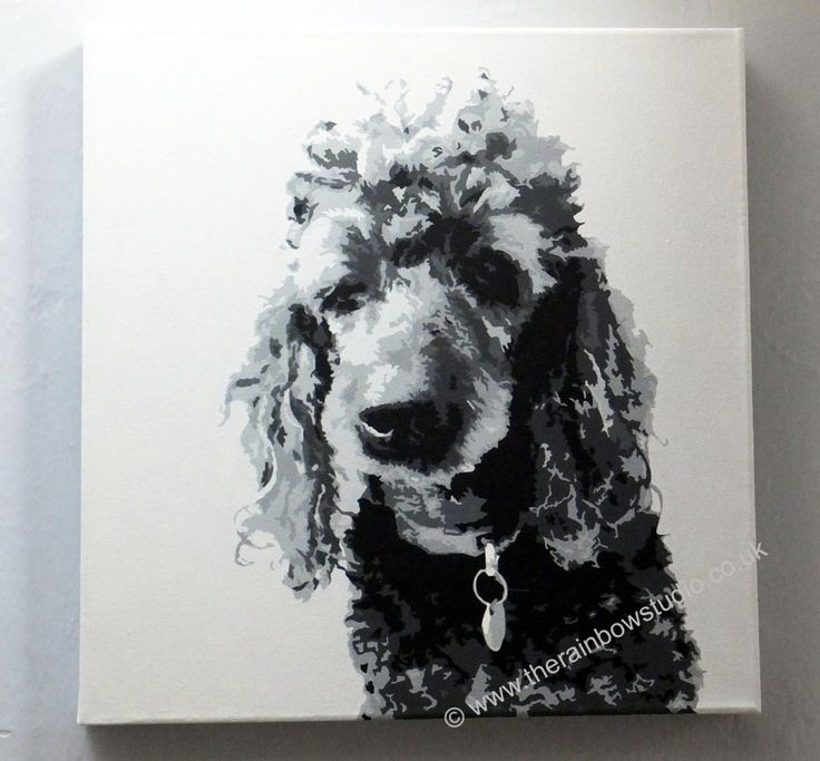 """Poodle Pet portrait Acrylic on 16""""x16"""" canvas by Emma Giles, commissions taken. www.therainbowstudio.co.uk"""