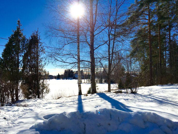 A winter day in Vuolenkoski