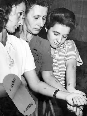 """Feb 1947: """"Three Jewish refugees show their tattoos from Nazi concentration camps. Miss P Frankel, left, Mrs K Frankel and Mrs D Zillberg are planning to settle into their new lives with relatives in Elwood."""""""