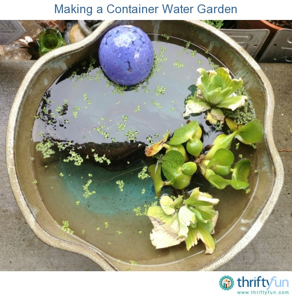 This is a guide about making a container water garden. Add a lovely special interest planting to your garden with a homemade container water garden.