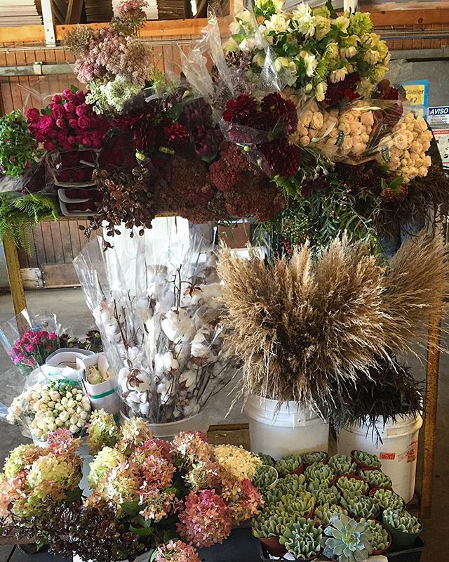 Throwing it back to last week #tbt  with this gorgeous order full of allll the best fall textures and colors!! I mean... #cotton y'all! And #chocolatecornflower #sedum #tinusberries #copperpenny #pampasgrass #hellebores delicious #gardenroses and more! 🌸