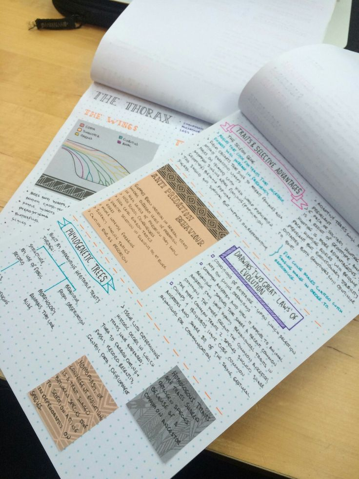 16 best Note Taking images on Pinterest Notebook, Student life and