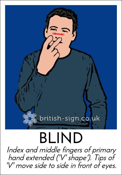 BLIND - British Sign Language (BSL)