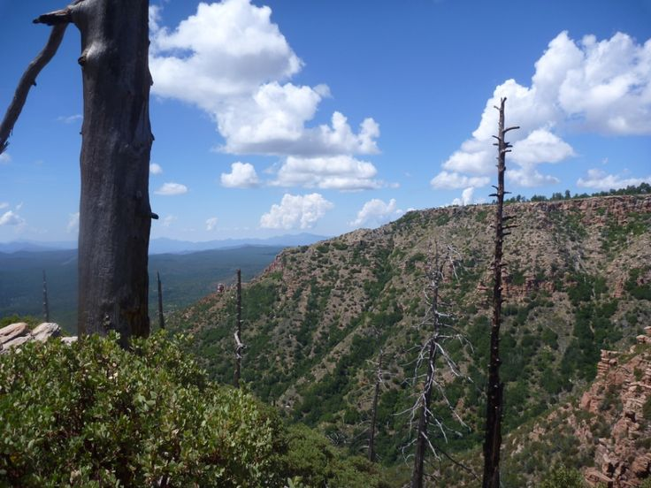 Mogollon Rim, Phoenix Arizona