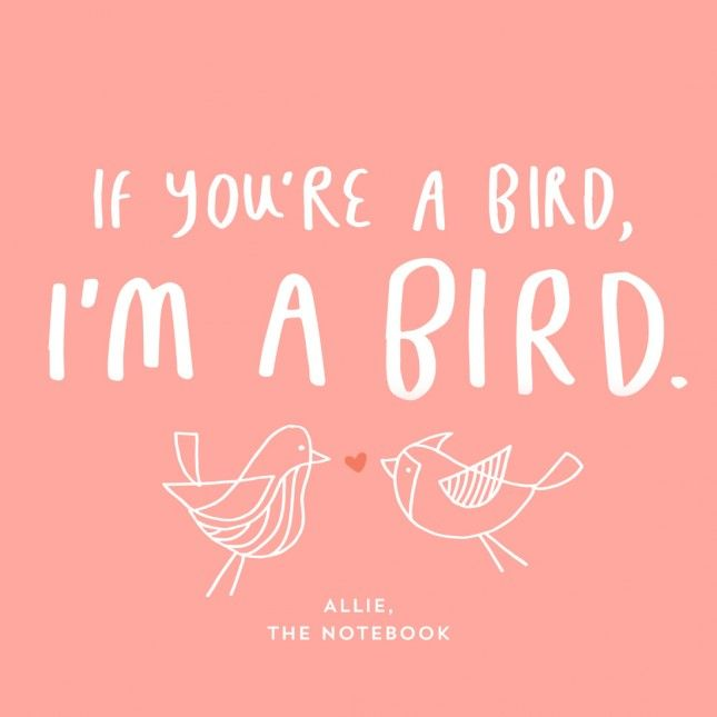 """If you're a bird, I'm a bird."" This pop culture love quote from The Notebook sums up everyone's feelings for their significant other."