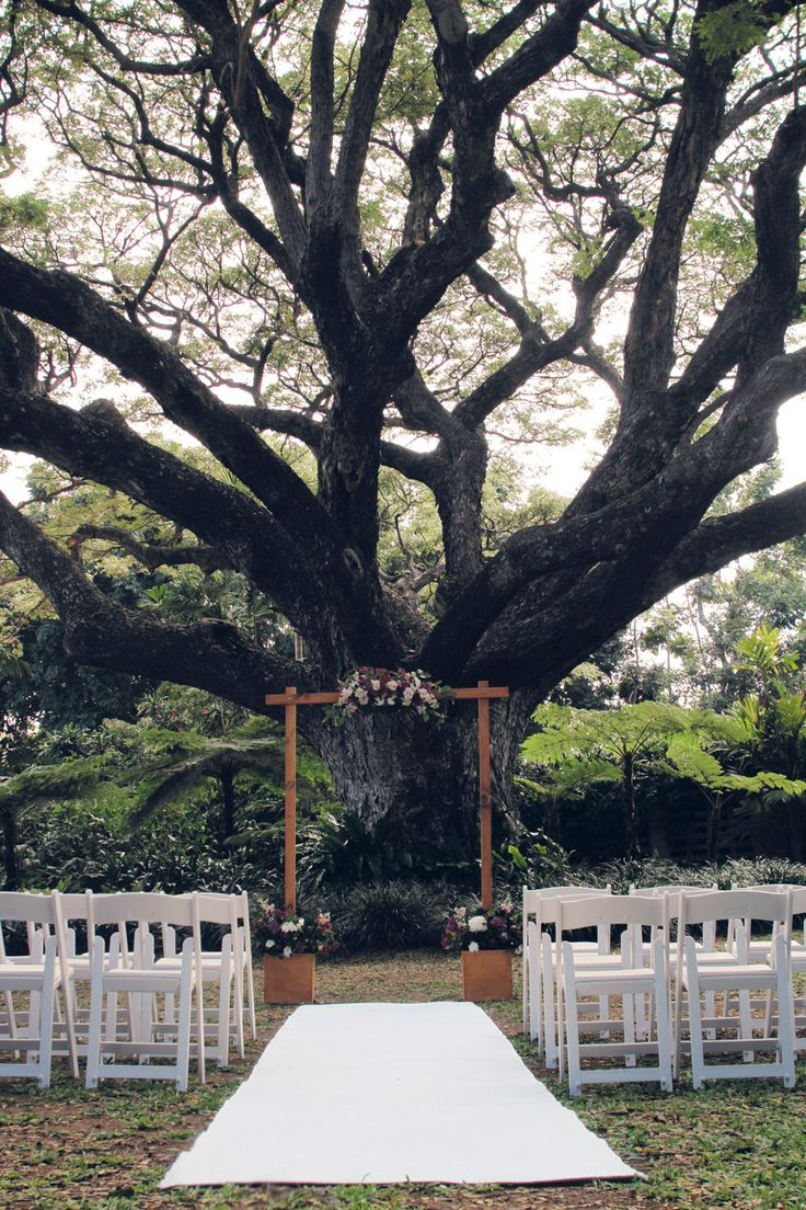 Garden Wedding Ceremony featuring white Americana chairs and white carpet  http://www.edeevents.com.au/8m-white-carpet