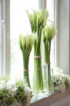 FLORES são perfeitas, não acham? Elas têm cor, forma, muitas têm perfume e, usadas sozinhas ou em conjunto, são lindas E alegram o ambie...