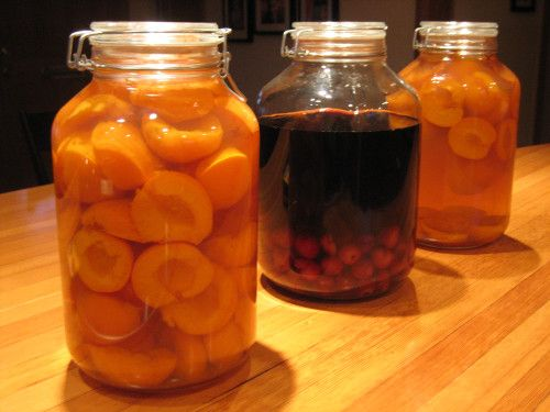 Apricot brandy & cherry cordial | Our Home Works
