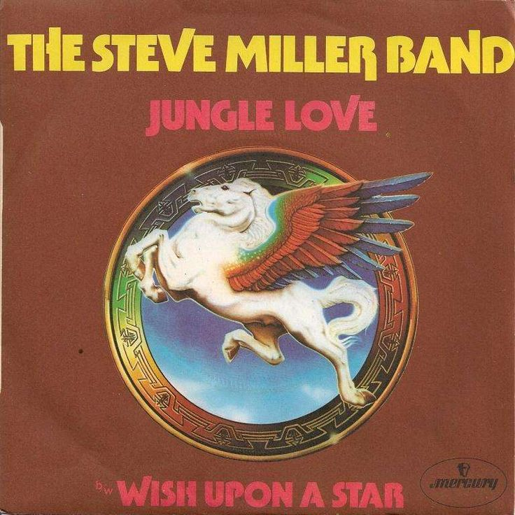 17 Best Images About Steve Miller Band On Pinterest