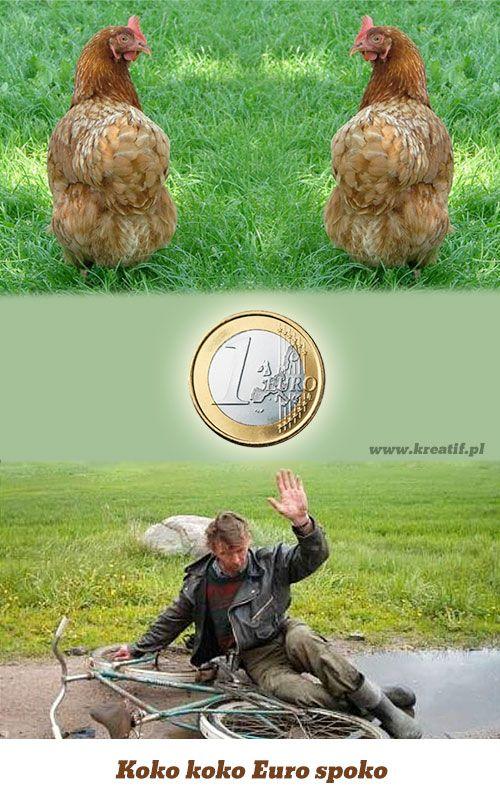 Koko koko Euro spoko - for Polish citizens only ;): Koko Euro, Polish Citizens, Humor