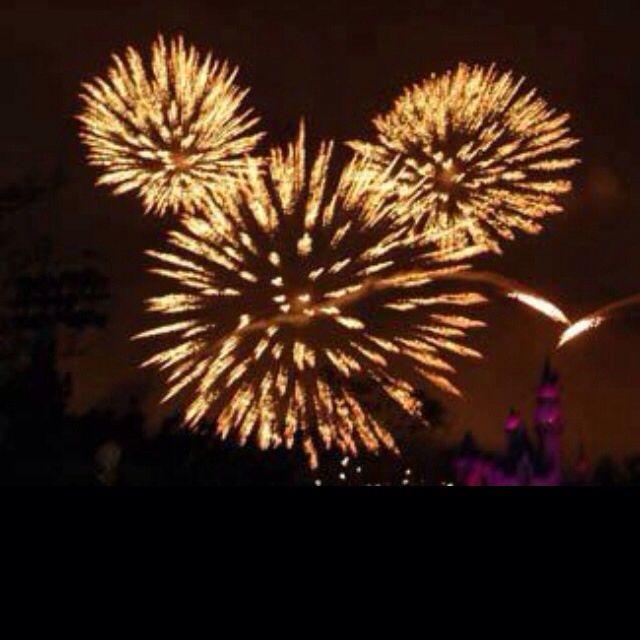 Fireworks @ Magic Kingdom New Years, WDW