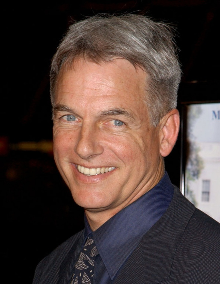 Mark Harmon one of my older man crushes