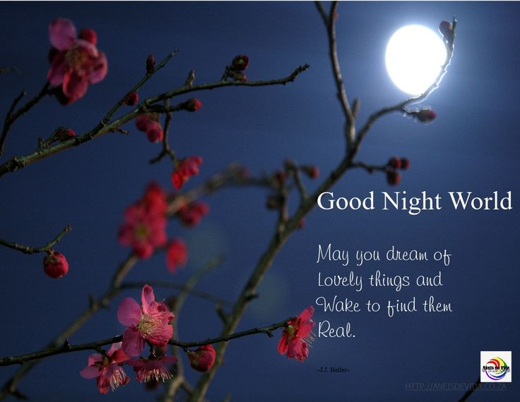 May you dream of lovely things and wake to find them real.