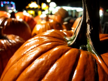 Off to the Circleville Pumpkin Show 2011! — Unapologetically Mundane