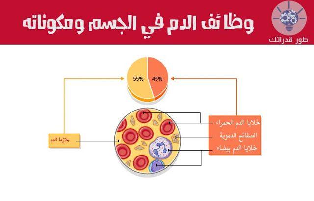 الدم هو في الأساس نوع من الأنسجة الضامة الموجودة في جسم الإنسان في الحالة السائلة يتكون من البلازما وهو سائل عالي اللزوجة و 3 أنو Pie Chart Chart Blog Posts