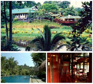 10 Secluded Forest Resorts in Malaysia for a Relaxing Getaway