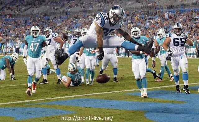 About Carolina Panthers The Carolina Panthers are a professional American football team in Charlotte, North geographical region, World Health Organization play within the NFC South division of the National league (NFL). The club is value some US$1.56 billion, in step with Forbes,and is controlled by founder Jerry Richardson and his family, World Health Organization have a