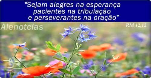 Alenotcias: Oração do Dia: Romanos 12,12