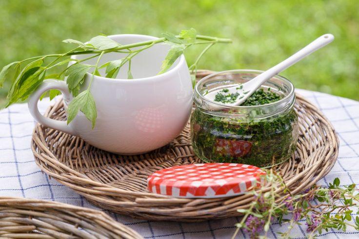 Domácímu polévkovému koření dodá skvělou chuť libeček. Ve formě pasty ho můžete uchovávat celou zimu a dochucovat oblíbené polévky a jídla. Další bylinkové recepty na blogu.