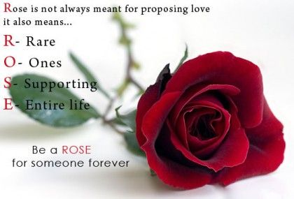 Rose Day SMS for Lover Girlfriend Boyfriend