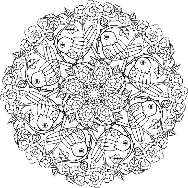 Picture Of Deer Park Coloring Page