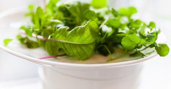 Lär dig odla grönsaker hemma - Hemmaodlat