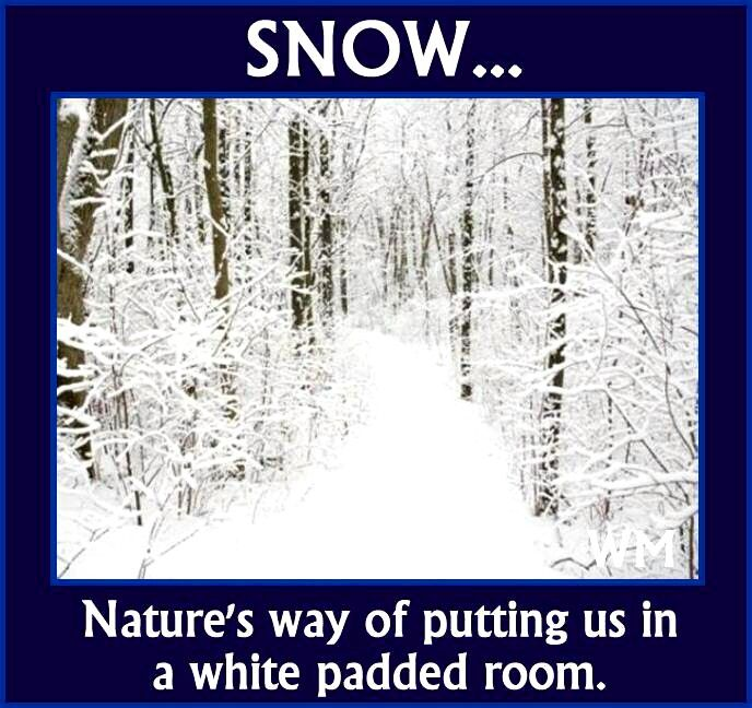 Friday Funny Quotes Winter Humor: Best 25+ Cold Weather Funny Ideas On Pinterest