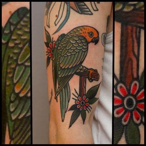 Parrot Tattoo by Tony Nilsson