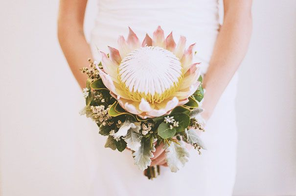 Protea are quite possibly my favourite flower. I love that they are such a hardy plant, growing & flowering in some of the worlds harshest conditions yet they have such a soft, velvety flower. What a glorious way to make a protea the star of a wedding bouquet.