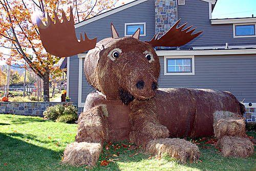 Vermont Fall Hay Festival. Killington, VT www.discoververmontvacations.com