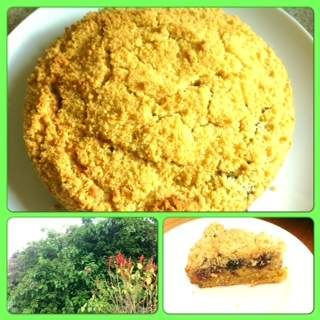 mulberry crumble cake