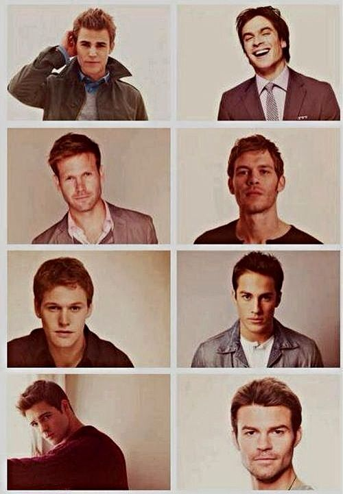 TVD never fails on getting hot guys on the show! Stefan, Damon (Salvatore Brothers), Alaric (Ric), Niklaus (Klaus), Matt (only human from the group), Tyler (werewolf turn hybrid), Jeremy (back from the dead vamp hunter), Elijah (nice original vamp)!