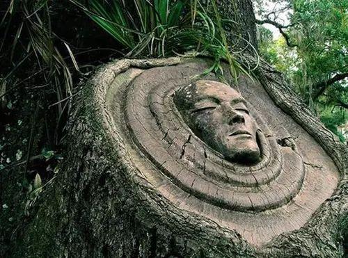 La Reine de ces Bois…♚ natures-queen:  http://weheartit.com/entry/57689724