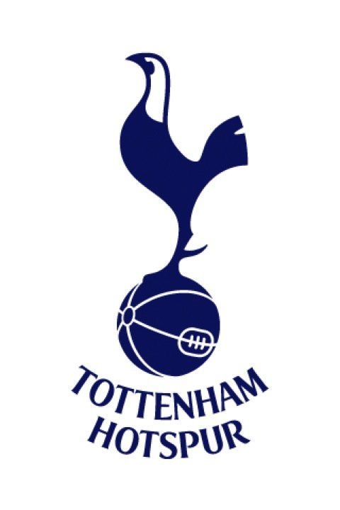Tottenham Hotspurs crest, which is pretty much exactly like a statue they have. It stands out for not following the conventions of most English league crests . Timeless and distinctive.